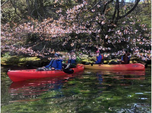 洞爺湖カヤック  東湖畔でゆっくりと自然満喫カヤックの紹介画像