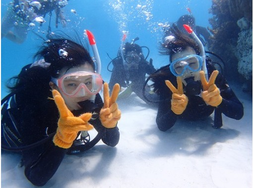 """[Ishigaki island Diving / Phantom Island / Morning] Excellent location! Let's shine on a miracle island on a white sand beach! """"Phantom island landing! & AM half-day experience Diving boat tour""""の紹介画像"""