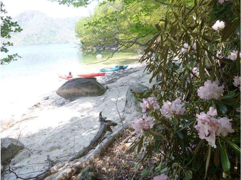 【栃木・日光】中禅寺湖カヌーピックニック(2.5時間)の紹介画像