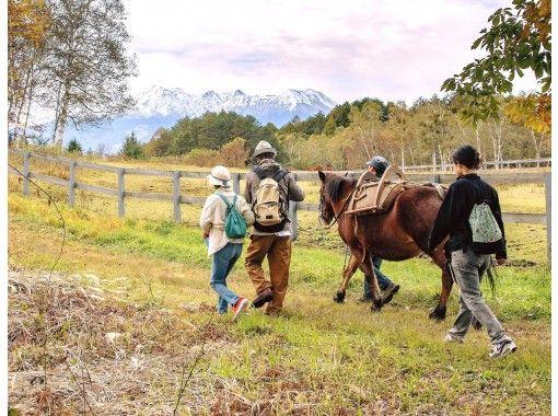 木曽馬と歩く プライベートウォーキング