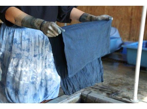 【徳島県・上板町】藍の栽培、蒅作り、染色、商品製作を一貫して行う藍染工房で「藍の魅力」を体感!!