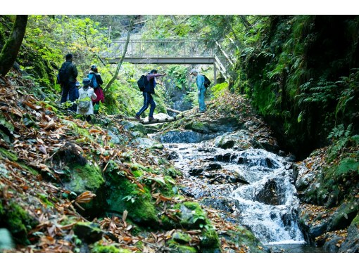 [Kyoto / Miyama] Dong Waterfall Trekking Tour Beginners welcome ◎ Aim for Miyama's unexplored waterfall! (With lunch)の紹介画像