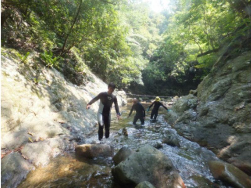 【沖縄・名護】大自然に癒される、南国リバートレッキングプラン!(1日コース)の紹介画像