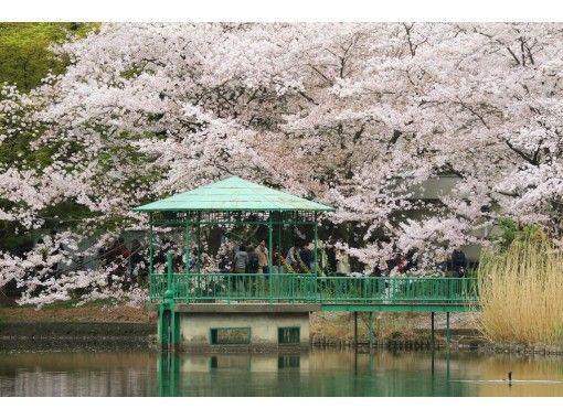 [Saitama / Omiya] A course to visit hidden spots in Omiya Town! Bonus-Welcome to the world of bonsai!の紹介画像