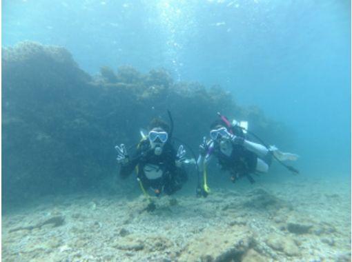 【沖縄・名護】ビーチダイビングで、沖縄の海を心おきなく満喫!(1ビーチ)