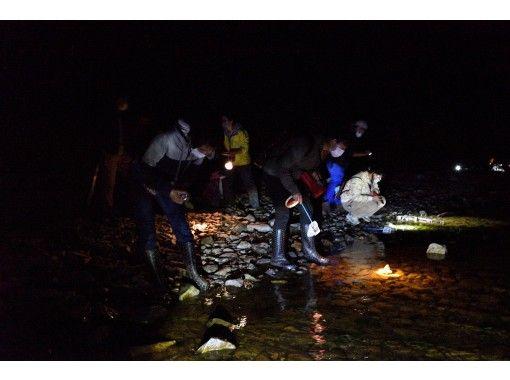 【栃木県・奥日光】夏休み・夜の湖畔で生き物・星空・暗闇、盛りだくさん!中禅寺湖畔ナイトハイキングの紹介画像