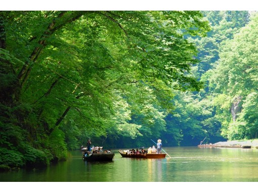 "[Tohoku, Hiraizumi, Ichinoseki, Iwate] Take a ""easy sightseeing taxi""! World heritage site, Hiraizumi Chusonji Golden Hall & Japan's Three Great Valleys, Geibikei 1-day sightseeingの紹介画像"