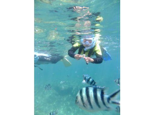 【沖縄・名護】お手軽!スノーケリングで、沖縄の海を思う存分楽しむ!(レンタル機材込)