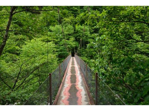 HISスーパーサマーセール実施中【ハイキング初級】絶景・西沢渓谷で癒しのマイナスイオンウォーク富士山を見渡すほったらかし温泉入浴日帰りツアーの紹介画像