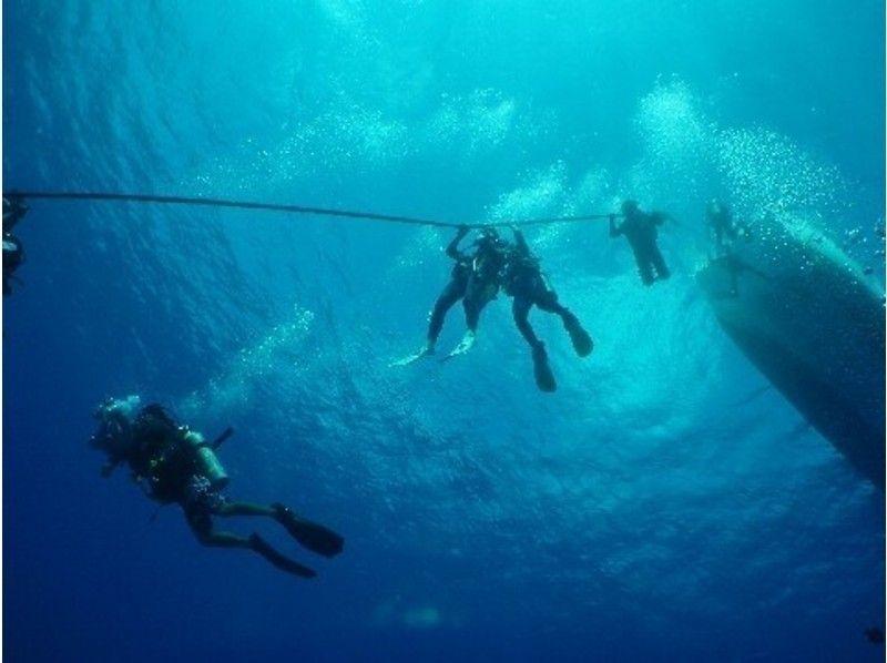 [靜岡神奈川縣,山梨縣潛水執照]開放水域潛水員介紹的圖像(初級班)