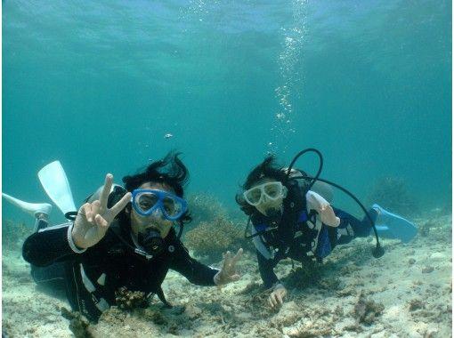 【和歌山/白浜】体験ダイビングで初めての水中世界へ!(ディスカバースクーバダイビングコース)