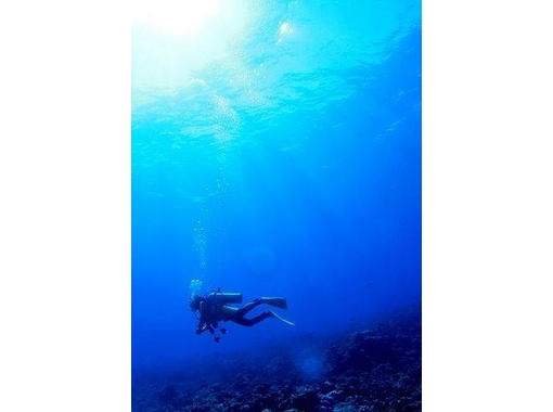 [Wet suit gift with Licensing! Okayama] Open Water Diver courseの紹介画像