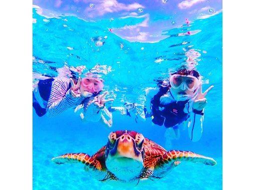 【2.5小时】☆超级特卖☆蓝洞探险&五彩珊瑚&海龟浮潜之旅【石垣岛】の紹介画像