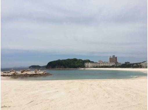 【和歌山・南紀白浜】PADIスキューバ体験ダイビング!!【コロナ対策1グループ貸し切りプラン】の紹介画像
