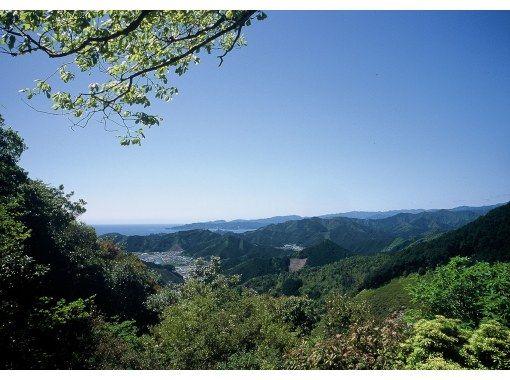 【三重県・伊勢/松阪】世界遺産熊野古道タクシー ツヅラト峠コースの紹介画像