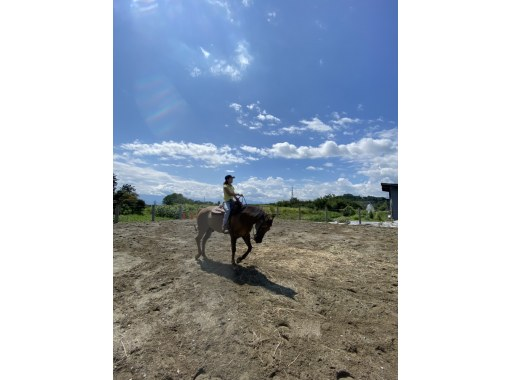 【山形・寒河江】限定開催!地元ガイドが案内!クロスバイクで行く、馬とのふれあい体験付きプライベート寒河江街中ツアーの紹介画像