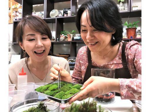 東京・おすすめアクティビティ:苔玉&苔テラリウム作り体験
