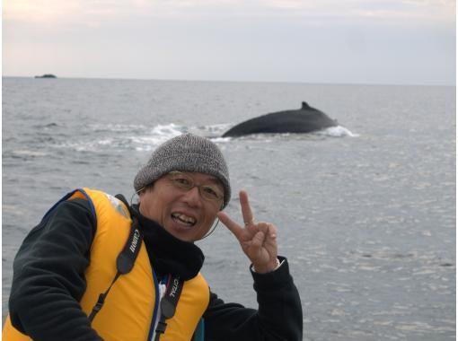 夏休み自由研究オンラインワークショップ「粘土でザトウクジラを作りながら、くじら博士になろう!」アイサーチ・ジャパン✕カラフルウェーブのコピーの紹介画像