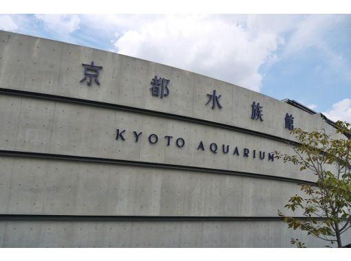 えいごですいぞくかん!Let's go to 京都水族館!~英語で学ぶリアルいきもの図鑑!~の紹介画像