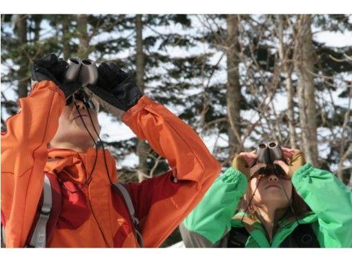 【北海道・ニセコ】スノーシューネイチャーツアー!未経験者歓迎・ティータイム付き(2時間)