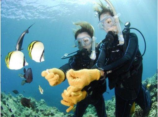 【安心の店舗集合】青の洞窟体験ダイビング!魚の餌付け・写真データ付き!レンタル器材は話題の電解水で強力除菌(Aプラン)