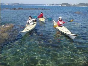 葉山シーカヤッククラブ(Hayama Seakayak Club)の画像