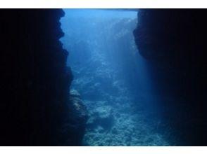 プズマリダイバーズクラブ(PUZUMARI Diver's Club)の画像