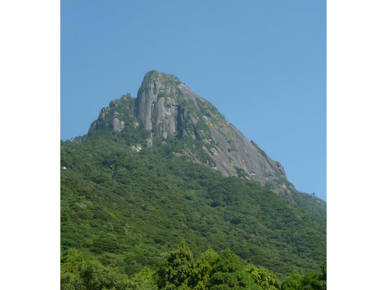 【鹿児島・屋久島】頂上の景色は大パノラマ!トレッキング(モッチョム岳コース)の紹介画像