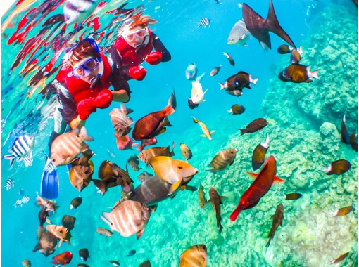 [ 冲绳 ·蓝洞】可爱的鱼和蓝洞浮潜!无限的照片和诱饵与星星的礼物和沙子の紹介画像