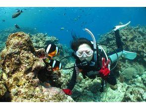 沖縄ダイビングショップシーモールの画像