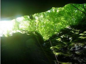 キャニオンズ canyons 奥多摩の画像