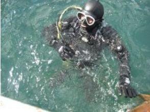 Diving Shop Libero(ダイビングショップ リベロ)の画像
