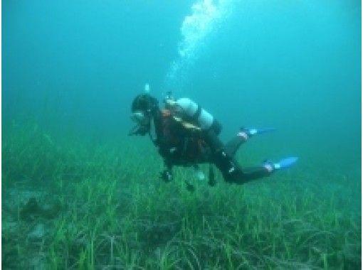 【岩手・三陸】体験ダイビング