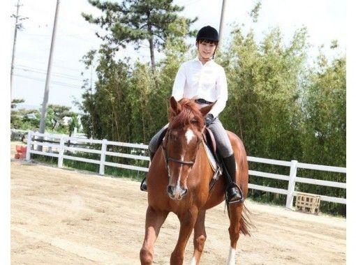 1回限りの特別料金!【愛知・名古屋で乗馬体験】ビジター体験プラン
