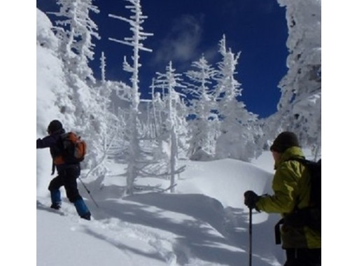 """[Nagano/ Kitayatsugatake] With a """"Snowshoes Tour"""" lunch that beginners can enjoy with confidence! Participate from 10 years old!の紹介画像"""