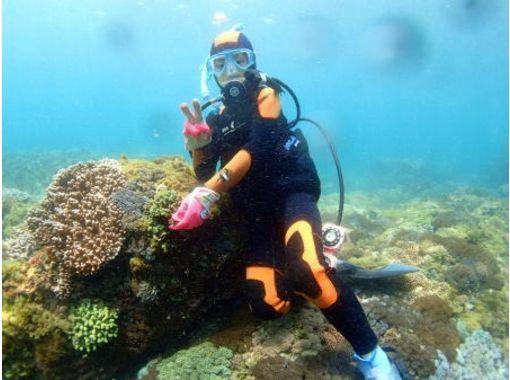【南国宮崎・日南海岸】トライスクーバー(体験ダイビング)【水着1枚で参加OK!】