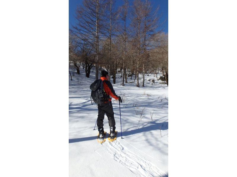 茶臼山スノーシューツアーの紹介画像