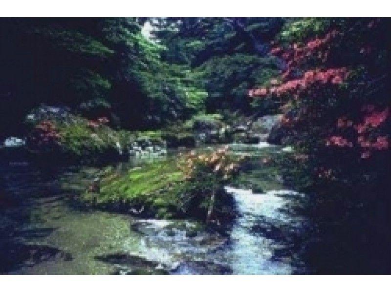 【鹿児島・屋久島】キャニオニング(淀川ツアー)1日コースの紹介画像