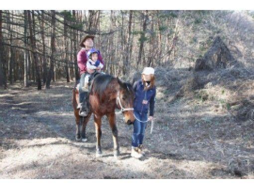 【山梨・八ヶ岳  初心者向け!】森林引き馬コース(15分)