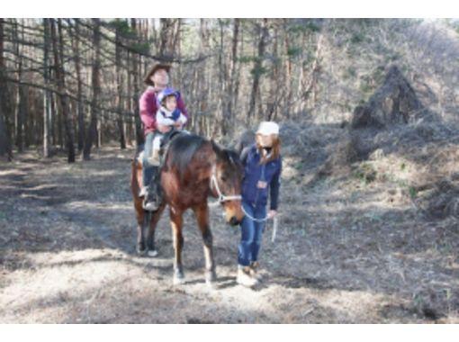 【山梨・八ヶ岳  初心者向け!】森林引き馬ロングコース(30分)の紹介画像