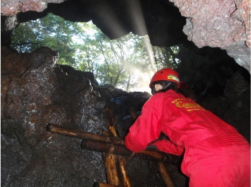 【山梨・河口湖】富士山麓・青木ヶ原樹海の溶岩洞窟探検(ケイビング)の紹介画像