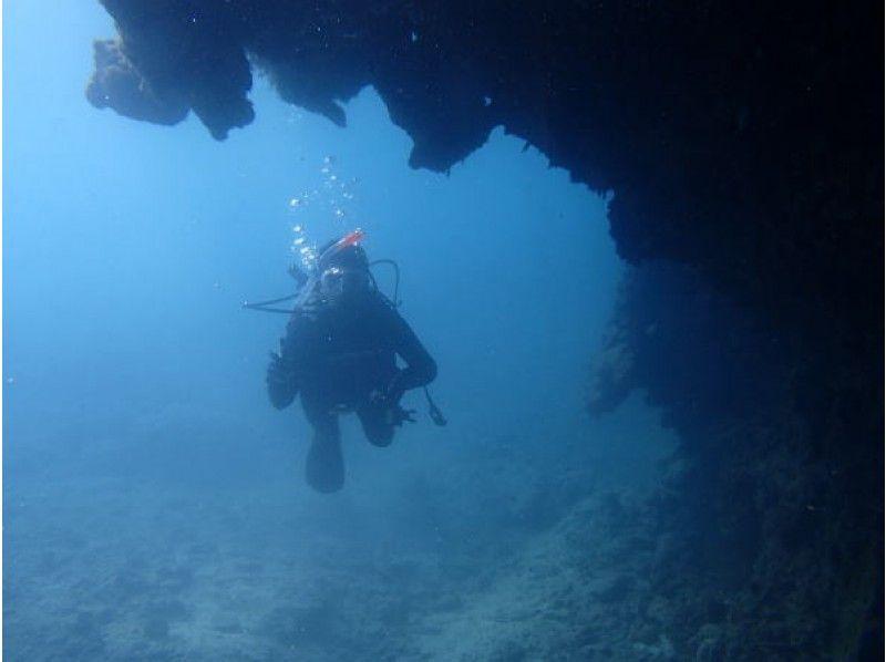 【沖縄・国頭】沖縄の澄んだ海を満喫する!FUNダイビング【ビーチ・ボート・VIP】の紹介画像