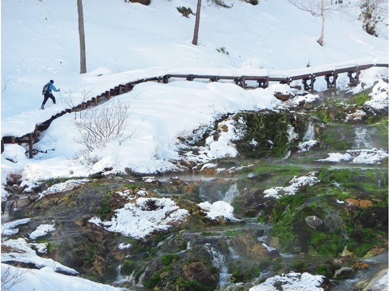 【群馬・奥草津】初心者歓迎!雪のチャツボミゴケ・神秘の池巡りスノーシューツアーの紹介画像