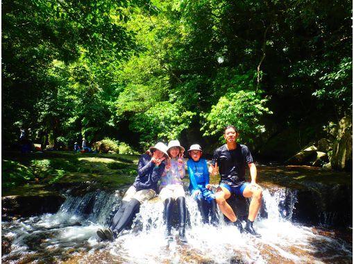 【沖縄・西表島】地域共通クーポンOK。ピナイサーラの滝(滝つぼ&滝うえ)カヌー&トレッキングツアーの紹介画像