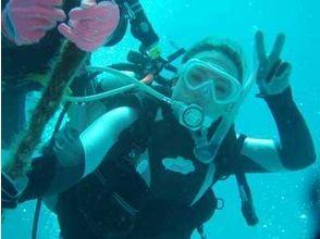 Diving School Ocean(ダイビングスクールオーシャン)の画像
