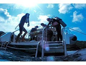 Sea Friend(シーフレンド)の画像