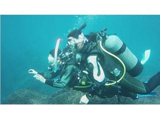 【伊豆大島】初めて水中世界を体験ダイビング