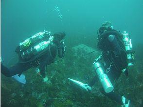 Fish Island Crew(フィッシュアイランドクルー)の画像