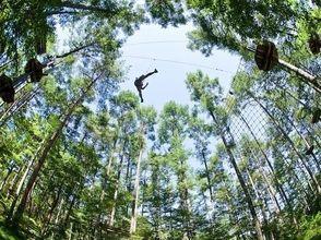 フォレストアドベンチャー・フジ(FOREST ADVENTURE MT.FUJI)の画像