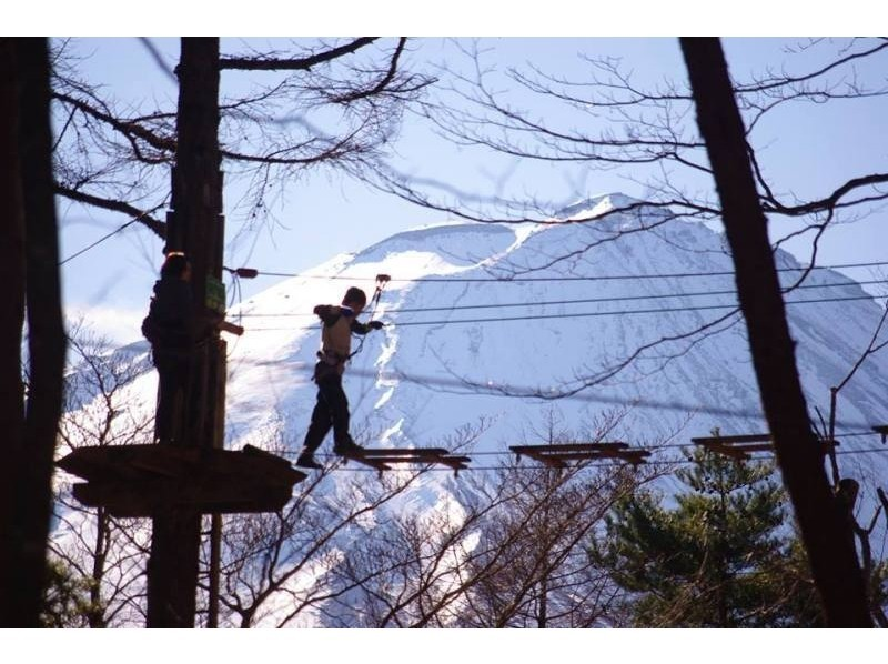 【山梨・富士山】森を遊びつくす!フォレストアドベンチャー(アドベンチャーコース)※団体割引あり!の紹介画像